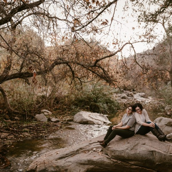 Bookstore & Elfin Forest Engagement