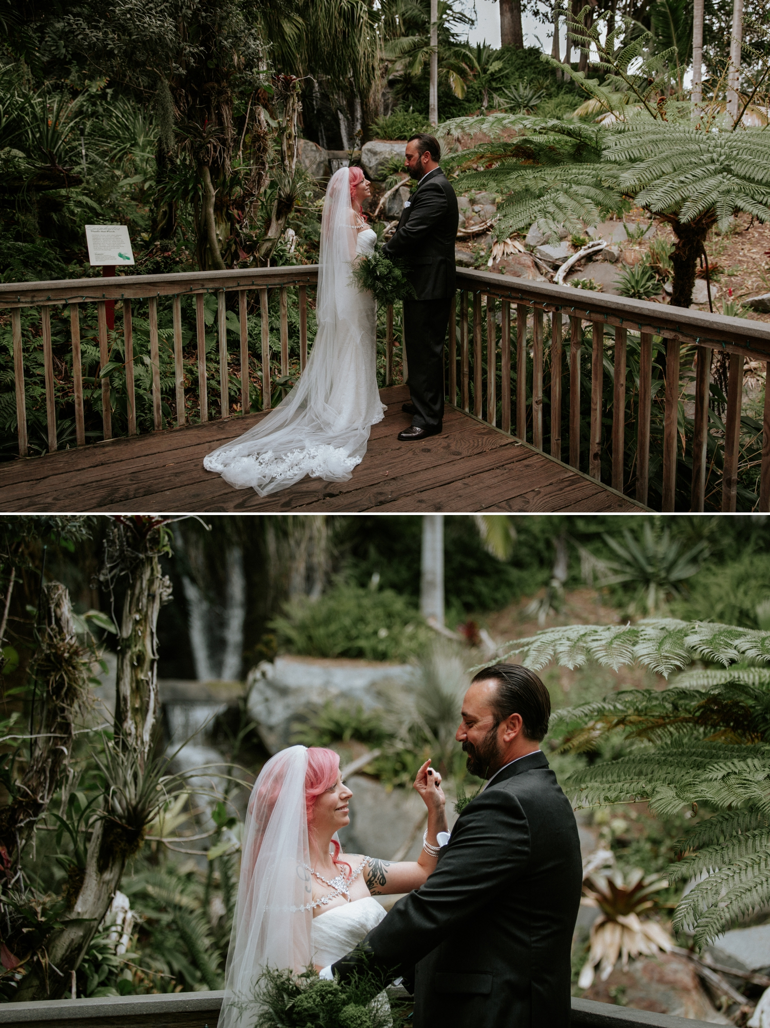 ... Intimate Wedding At San Diego Botanic Garden By Paige Nelson ...