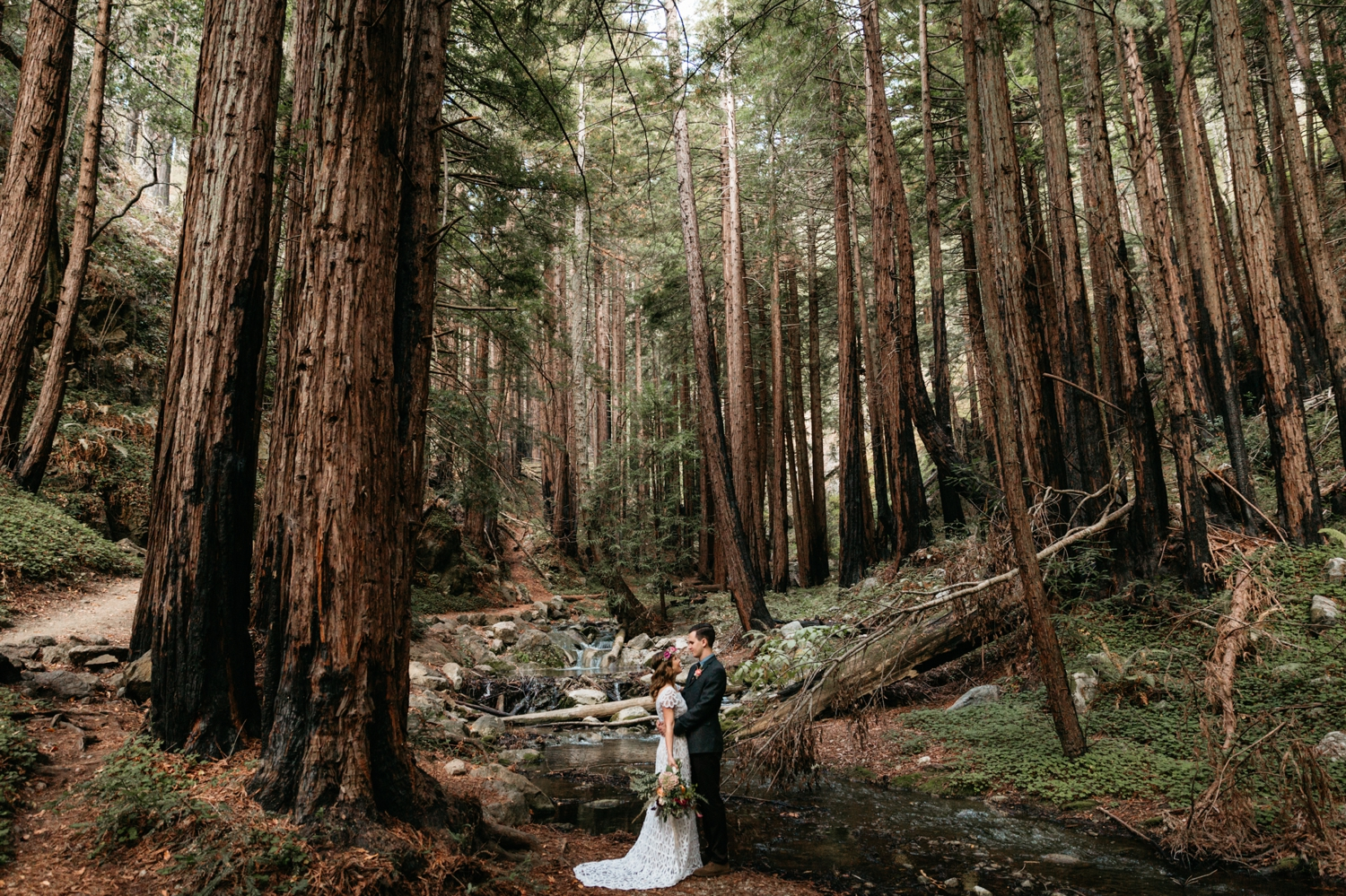 Intimate wedding in Big Sur | Paige Nelson