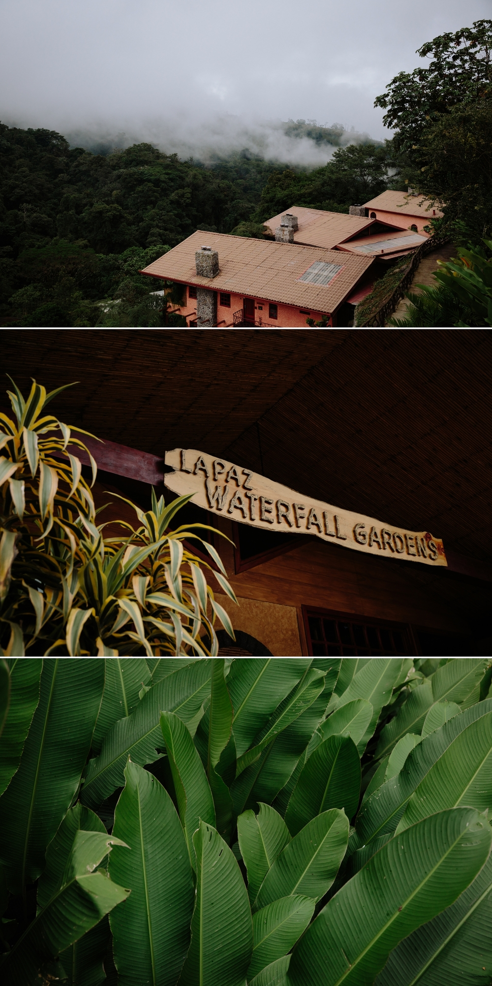 La Paz Waterfall Garden and Peace Lodge in Costa Rica by Paige Nelson