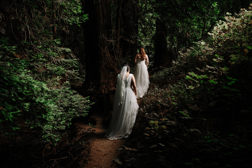 Intimate elopement in Julia pfeiffer burns, Big Sur by San Diego photographer Paige Nelson