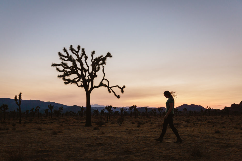 Joshua tree portraits at sunset by San Diego photographer Paige Nelson
