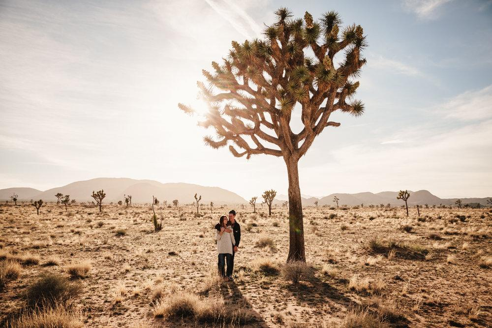Joshua Tree couple's portraits at sunset by San Diego photographer Paige Nelson