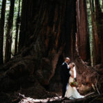 Redwoods wedding in Guerneville by Paige Nelson