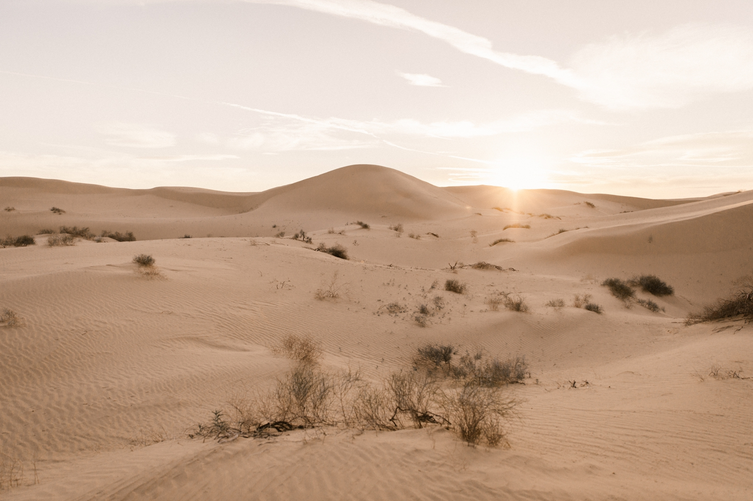 Imperial sand dunes in Glamis by Paige Nelson