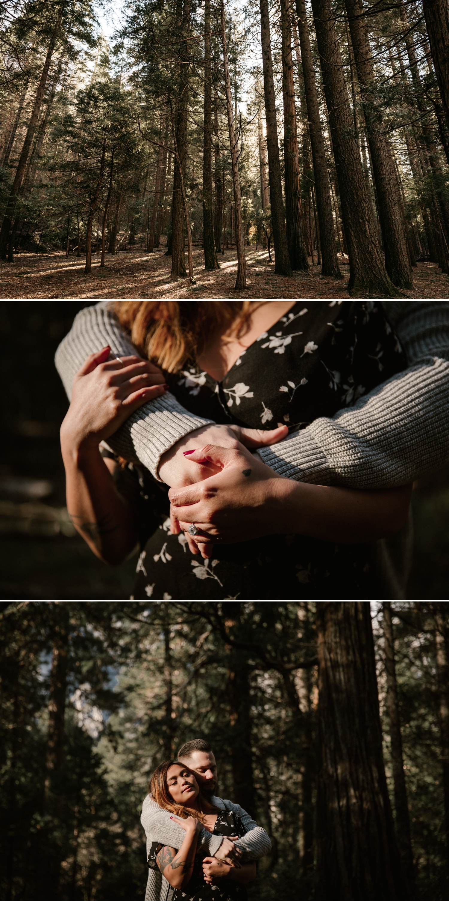 Redwood engagement in Yosemite by Paige Nelson, Nixie and Mike