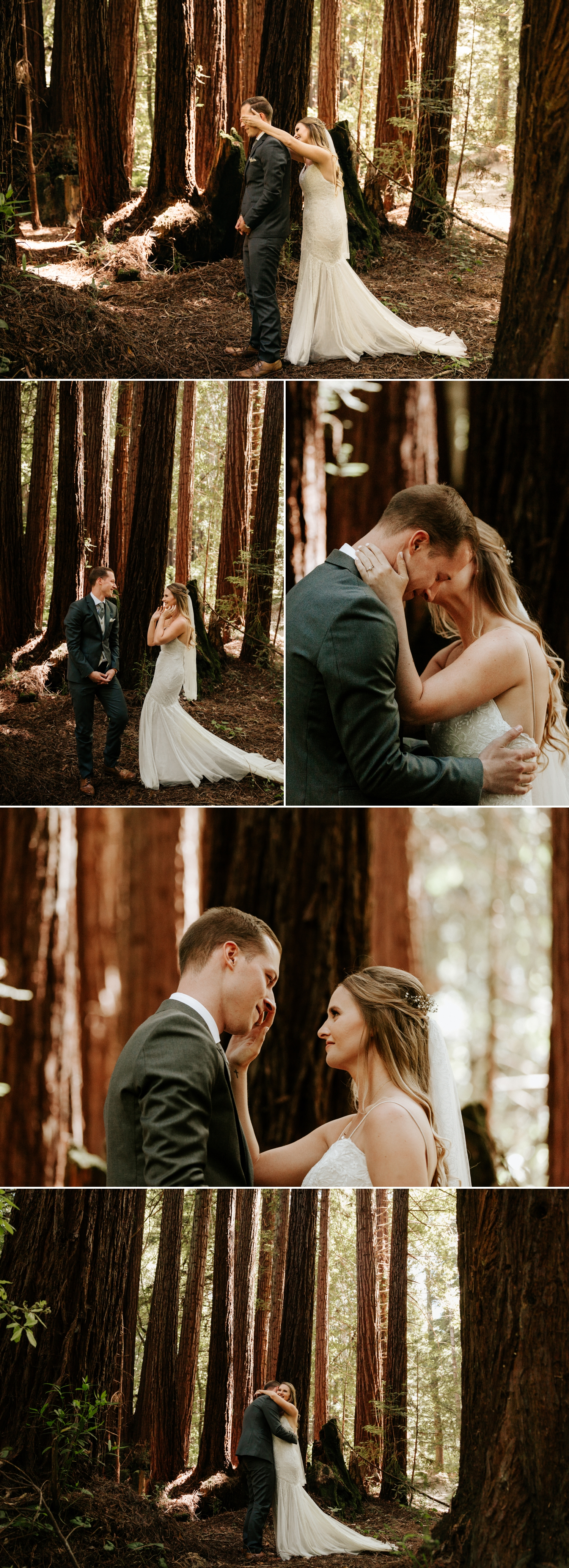 Intimate wedding in Henry Cowell Redwoods in Santa Cruz by Paige Nelson