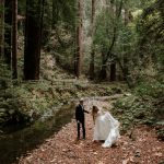 Intimate Muir Woods Wedding in San Francisco by Paige Nelson Photography