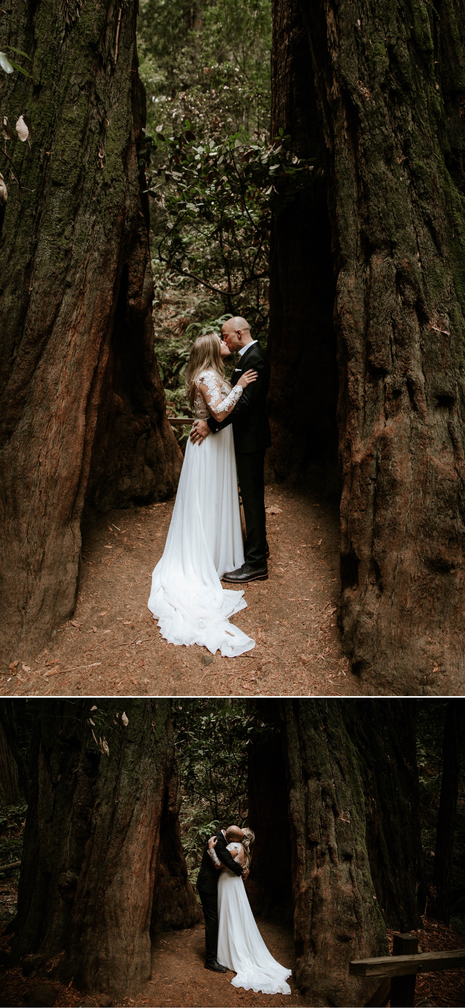 Redwood Elopement in San Francisco Muir Woods by Paige Nelson