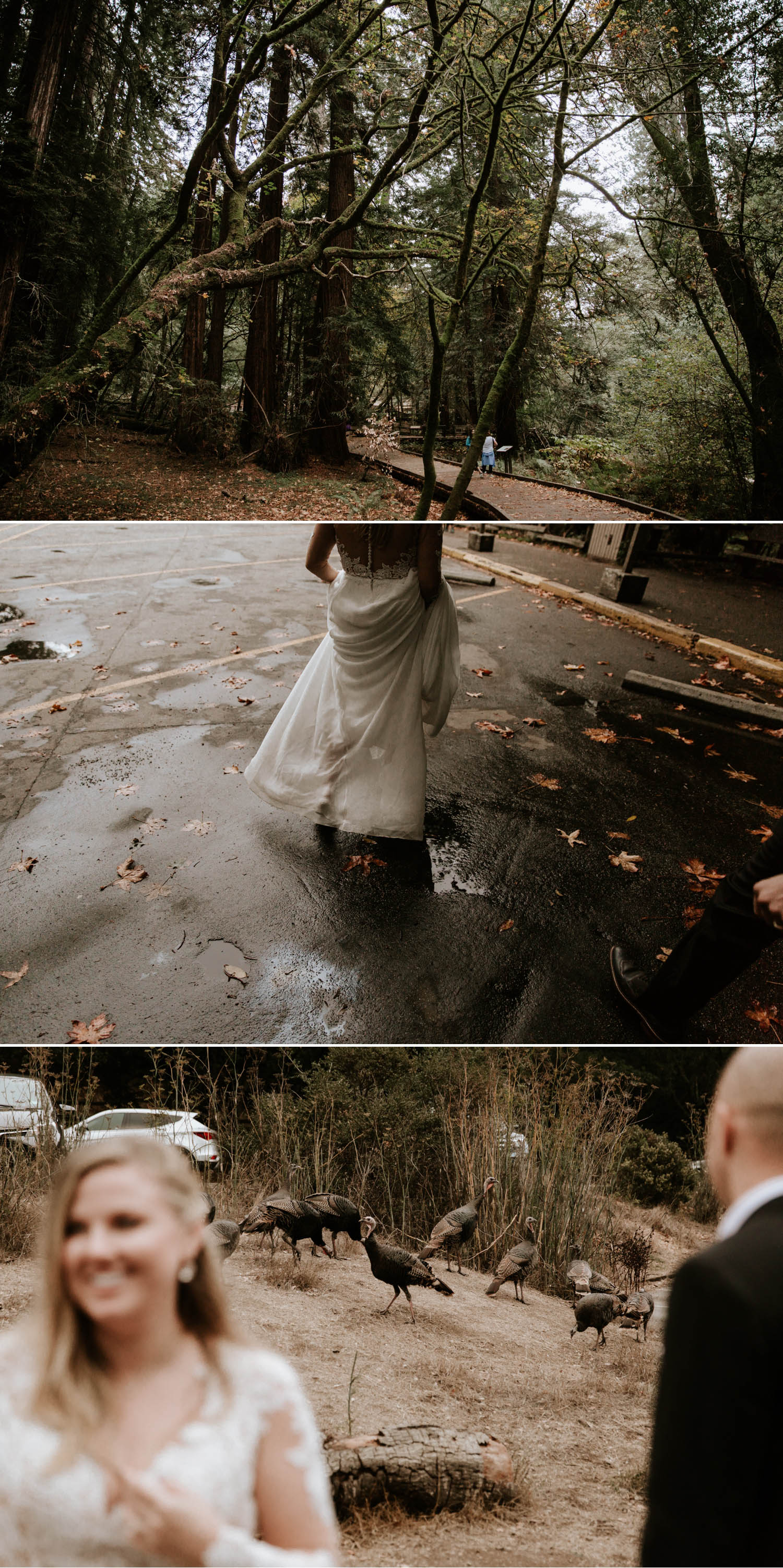 Muir Woods Elopement in San Francisco by Paige Nelson Photography