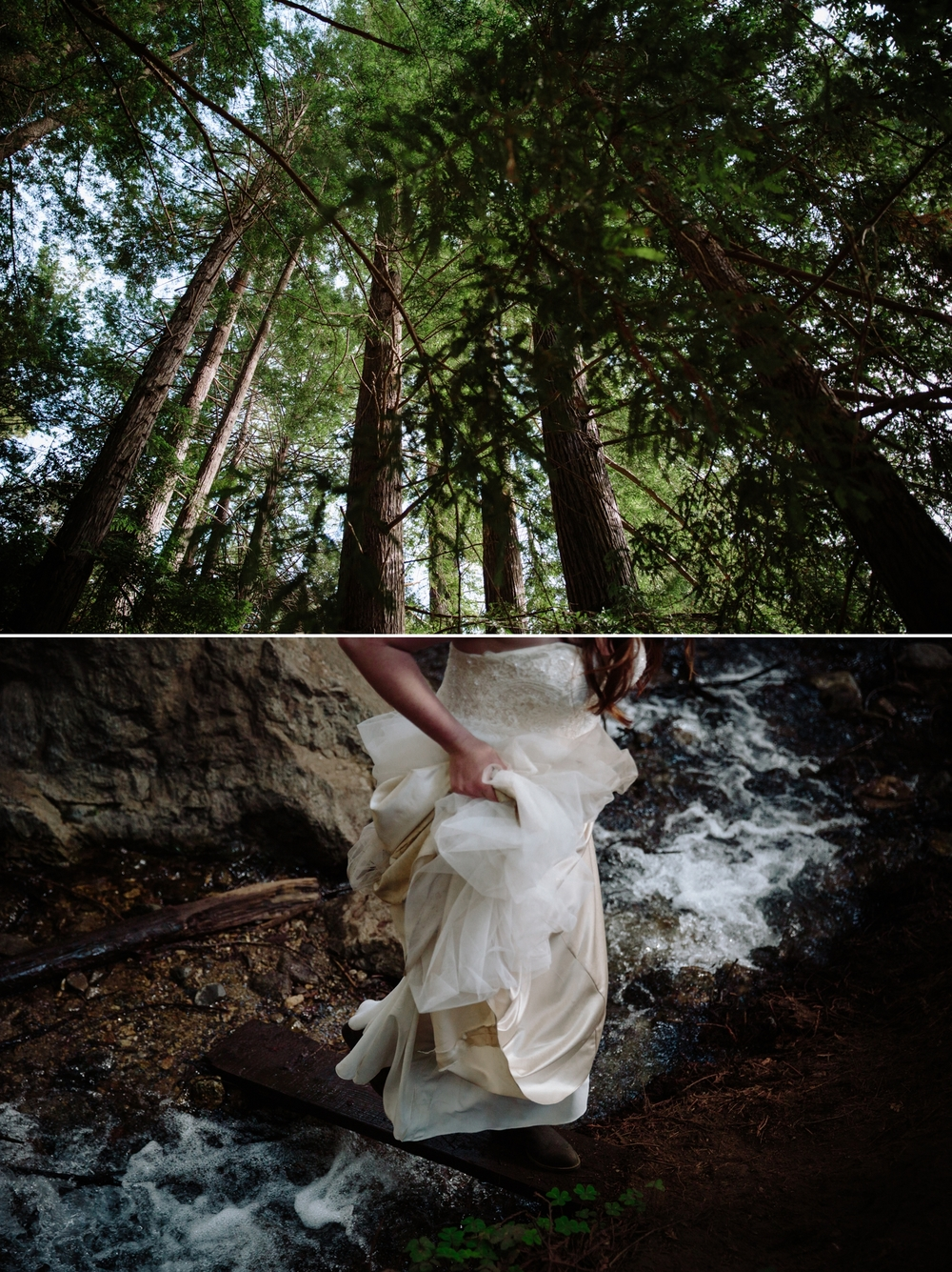 Lesbian elopement at Julia Pfeiffer Burns in Big Sur by San Diego photographer Paige Nelson