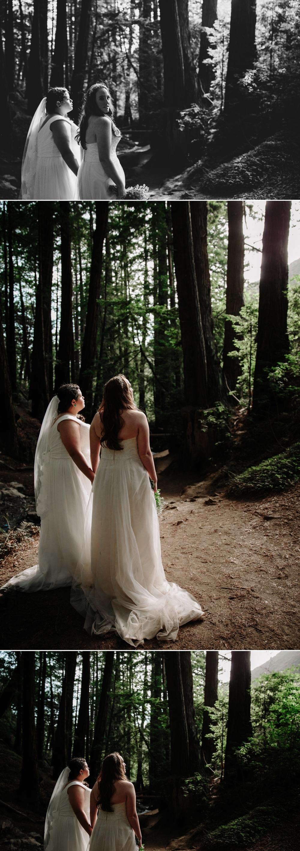 Julia Pfeiffer Burns elopement in Big Sur by San Diego photographer Paige Nelson