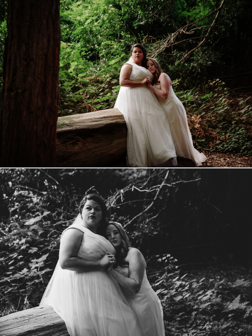 Big Sur elopement in redwoods at Julia Pfeiffer Burns by Paige Nelson