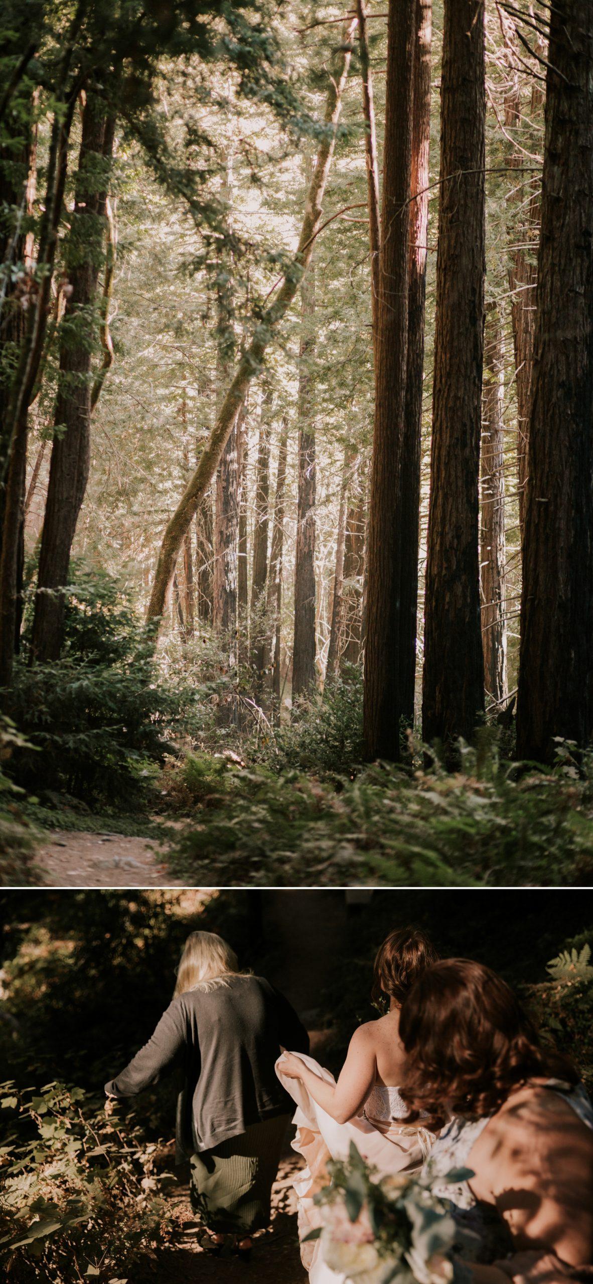 Limekiln State Park elopement in Big Sur