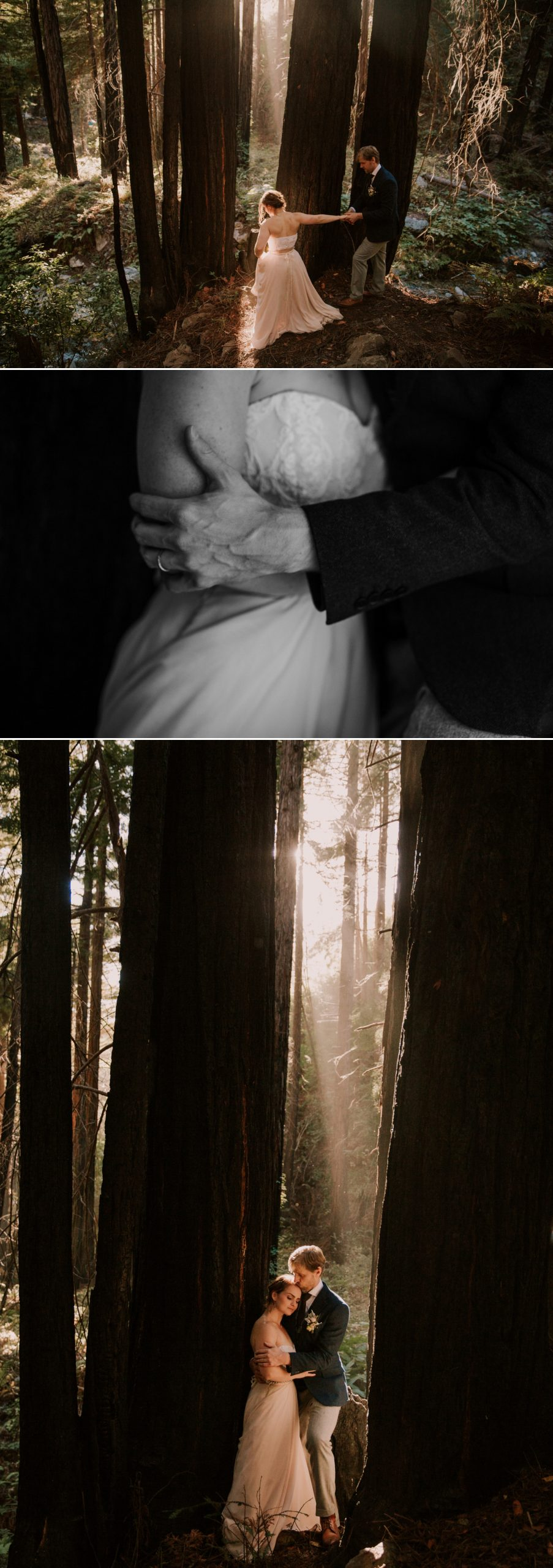 redwood elopement in Big Sur