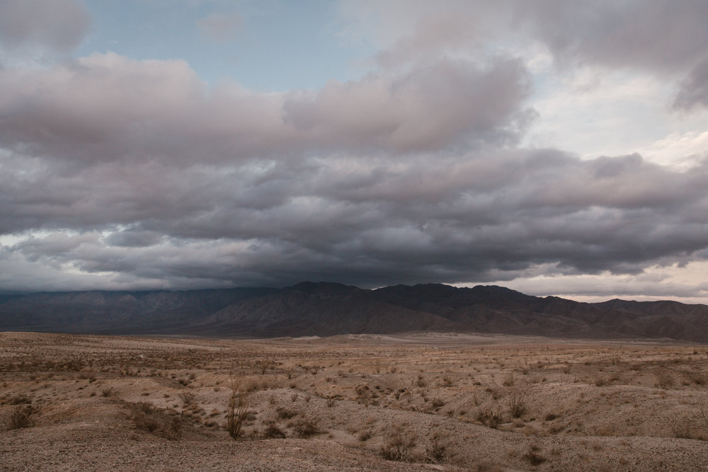 Desert in Anza Borrego by San Diego photographer Paige Nelson