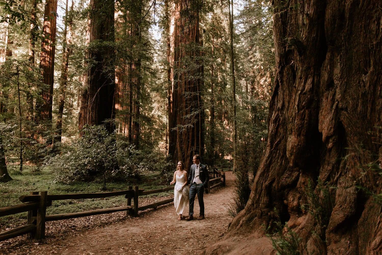Henry Cowell elopement Santa Cruz