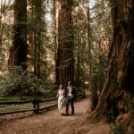 Intimate redwood wedding at Henry Cowell State Park