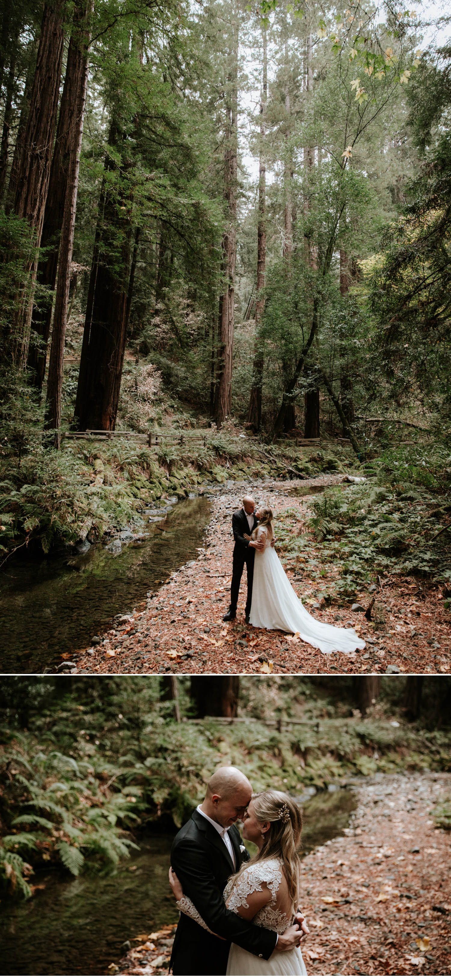 Redwood Elopement In San Francisco Muir Woods By Paige Nelson Forest Wedding