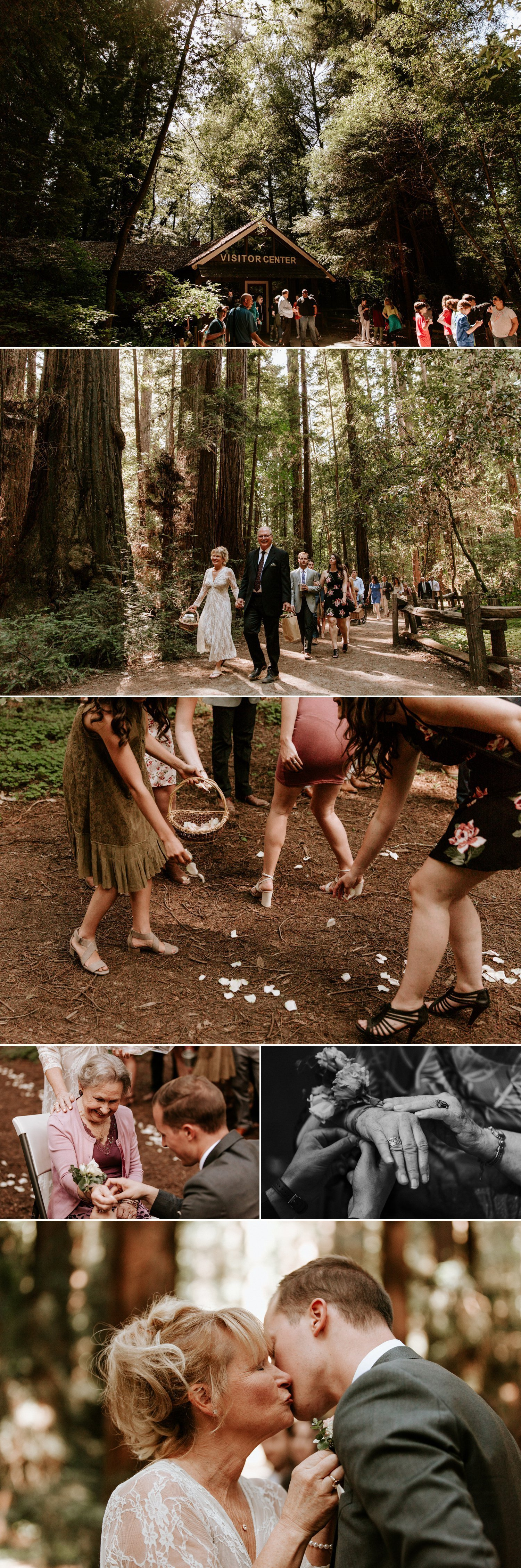Henry Cowell Redwood wedding Felton