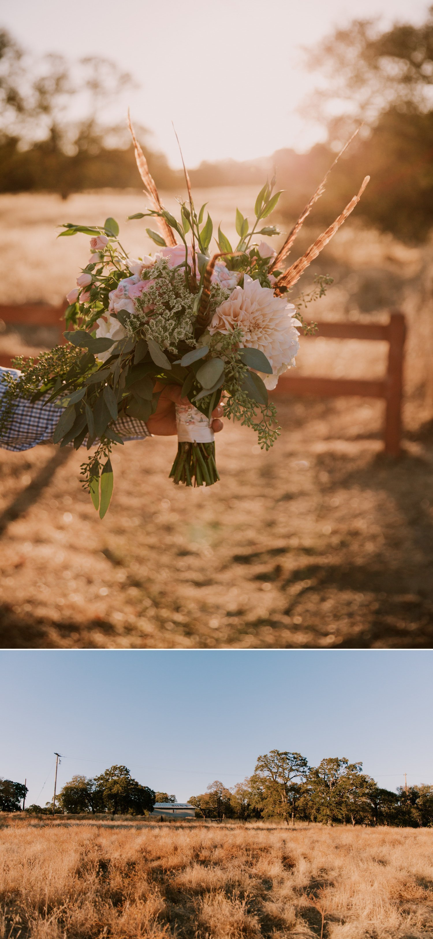 Sacramento wedding photographer Paige Nelson