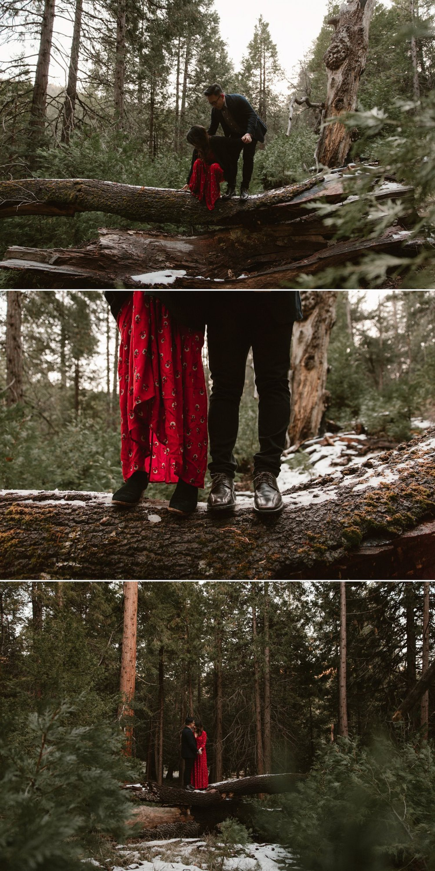 Palomar Mountain engagement Doane Pond