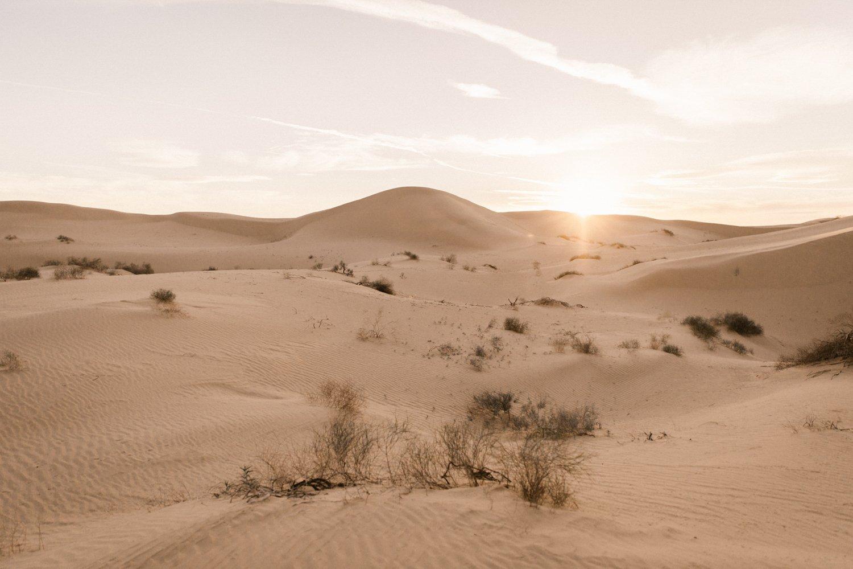 San Diego Sand Dunes Glamis