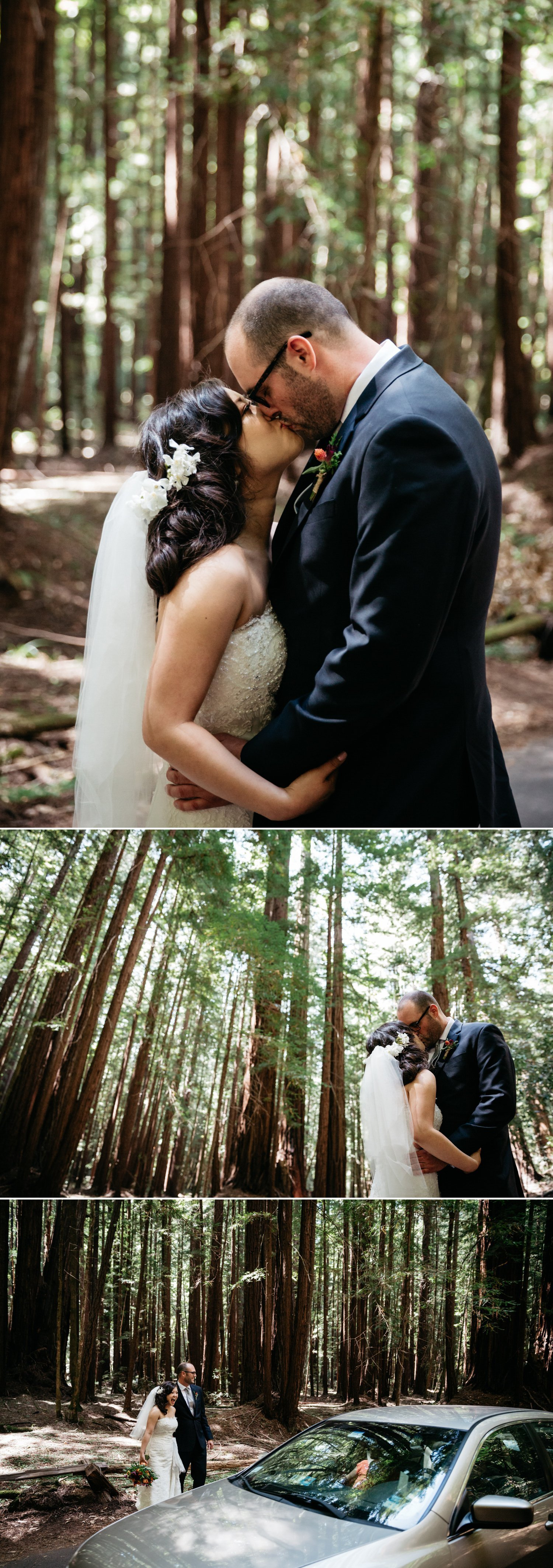 Redwood wedding in Guerneville Paige Nelson