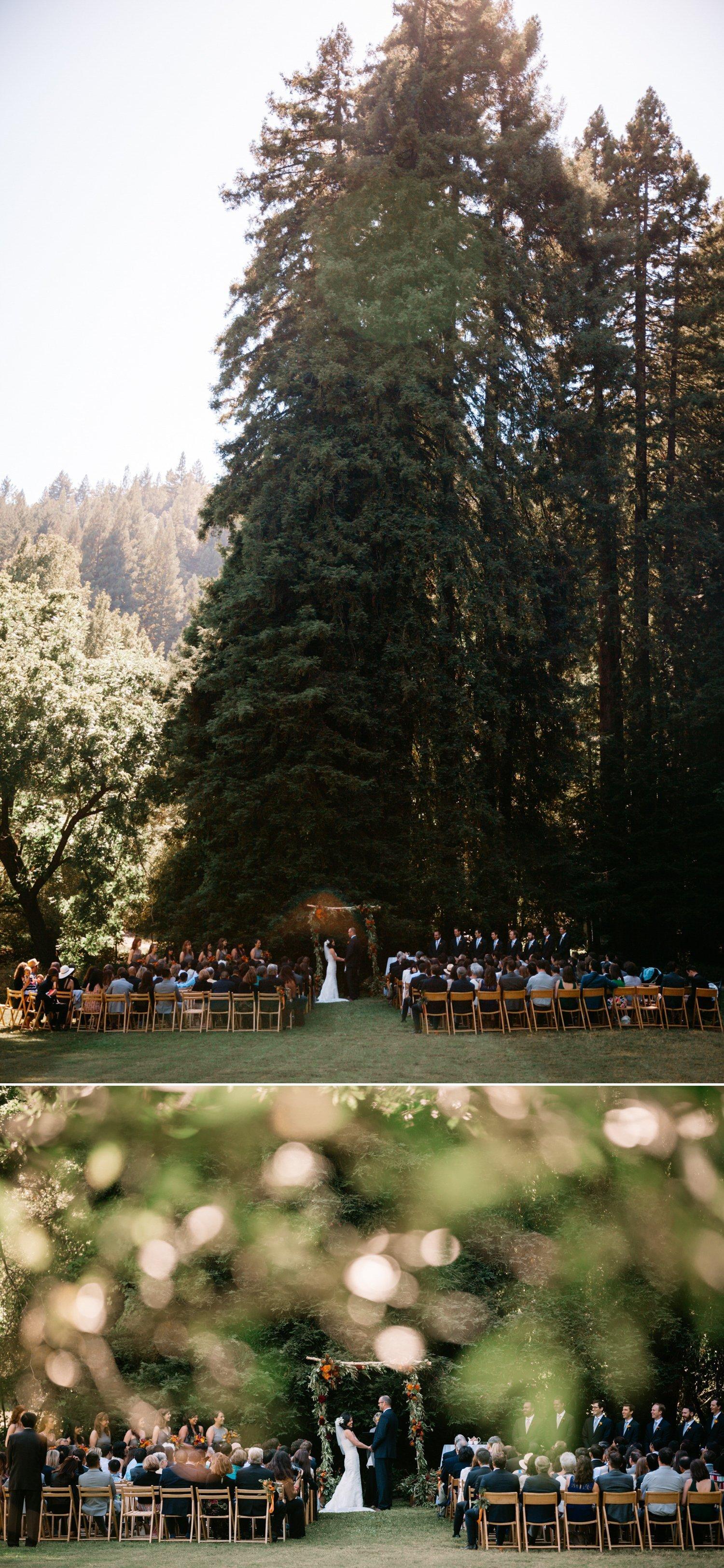 Redwood wedding venue Northern California