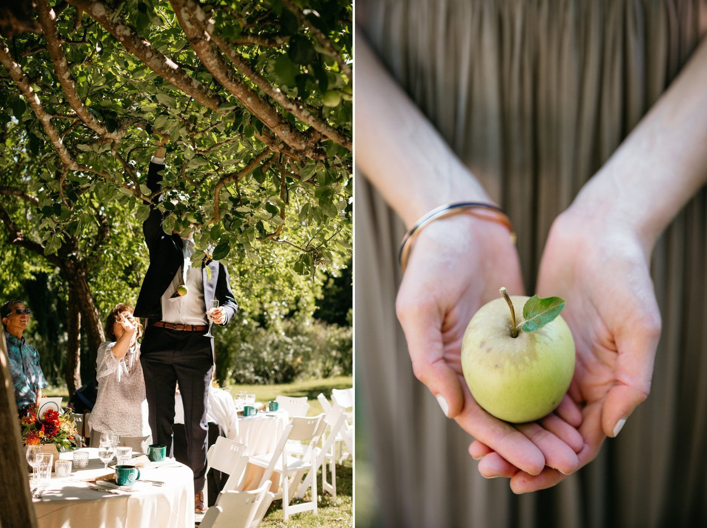 Apple Orchard Reception Dawn Ranch